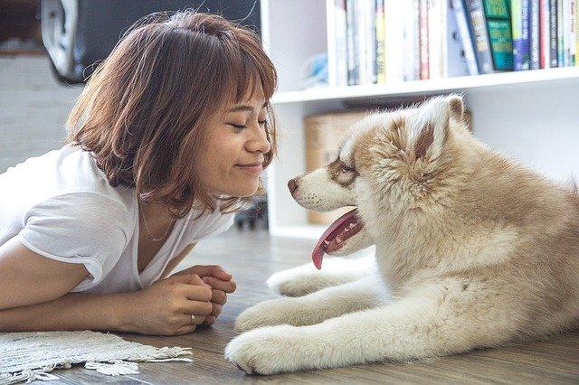 czym karmić psa