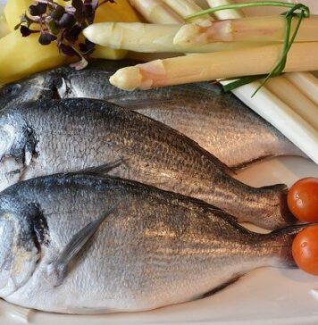 czy ryba to mięso